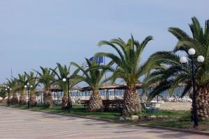 Nea Flogita, Halkidiki Greece